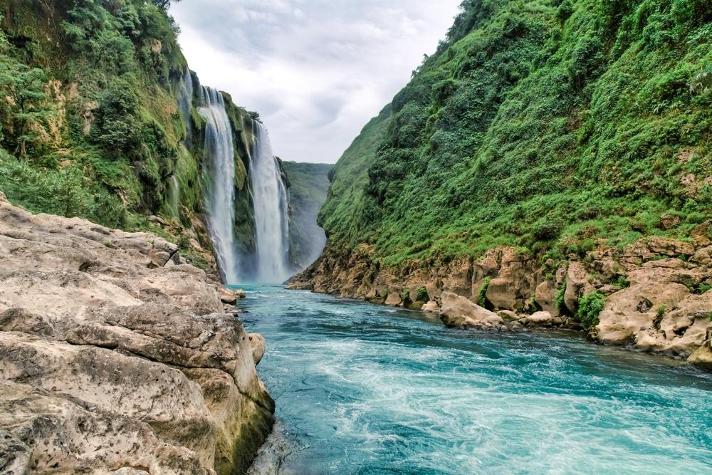 Cascade Tamul