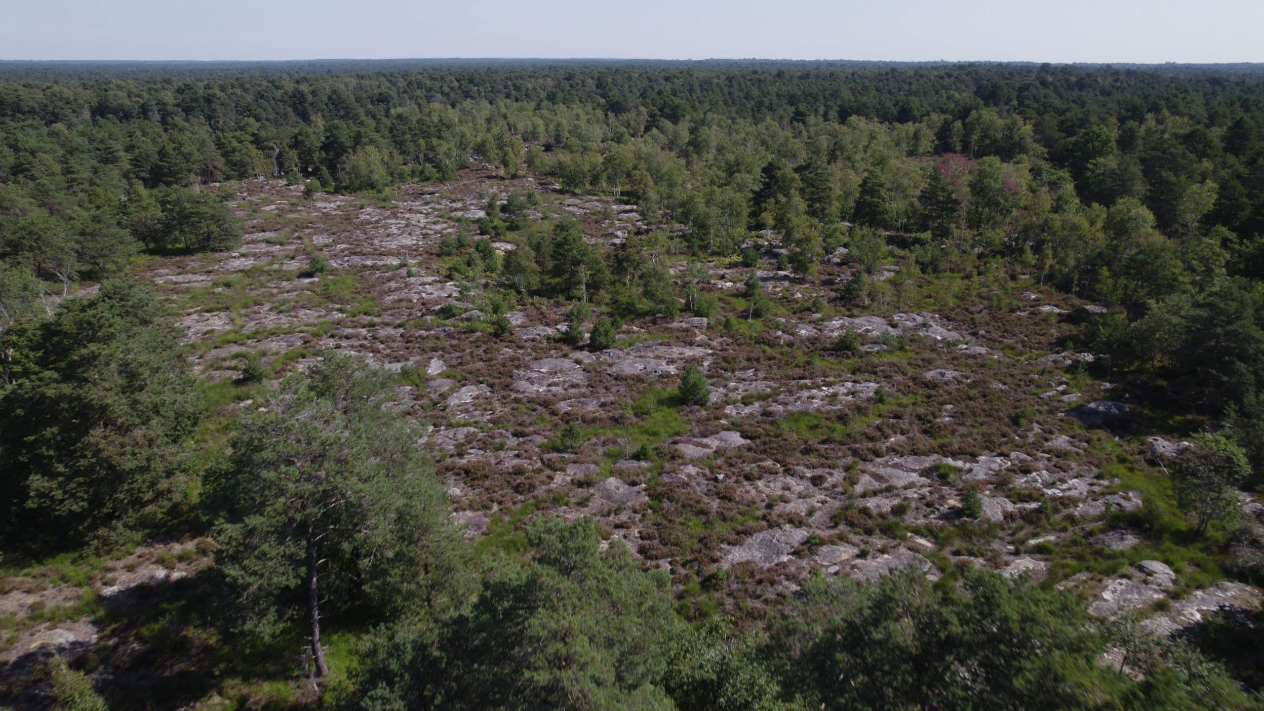 Le maintien de la biodiversité