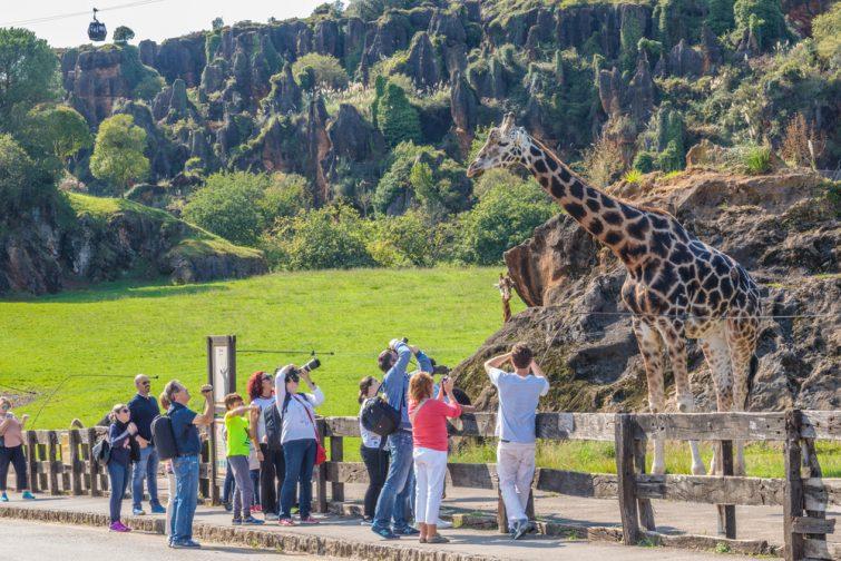Le parc de Cabarceno - visiter Santander