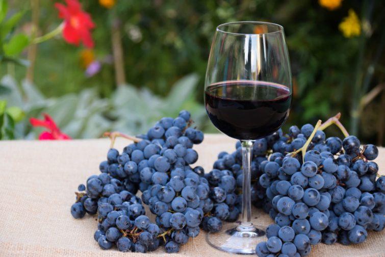vin rouge Touraine